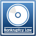 Really Interesting Bankruptcy Matters (CD)