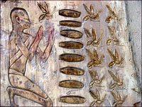 bees-egypt.jpg