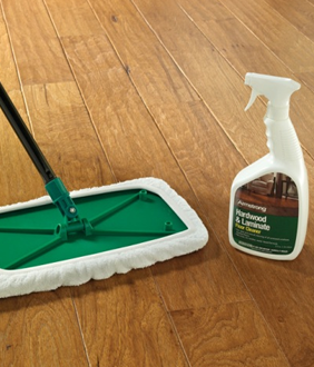 cleaner2.png