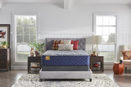 Precious Magnificence Plush TT Full Mattress