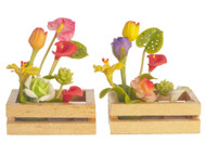 Hand Made Flower Boxes