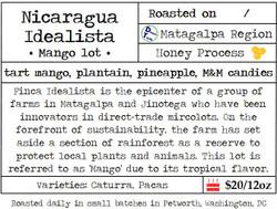 Nicaragua Idealista Mango Lot