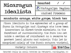 Nicaragua Idealista Caturra Lot