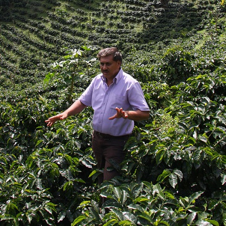 Don Roger Mairena. Photo courtesy of Gold Mountain Coffee Growers.