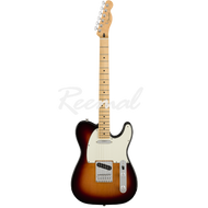 Fender Electric Guitar Player Series Telecaster Maple 3TSB