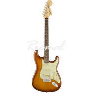 Fender Electric Guitar American Performer Stratocaster Rosewood HBST
