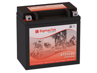 Walmart ES14BS motorcycle battery