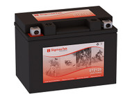 Honda 1000CC Super Hawk VR1000F, 1997-2000 Replacement Battery