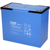 FIAMM 12 FLX 300 OEM UPS Battery