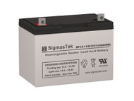 Bright Way Group HX12-110 Replacement 12V 110AH SLA Battery