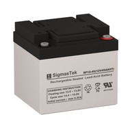 Bright Way Group HXD12-50 Replacement 12V 45AH SLA Battery