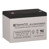 Bright Way Group BW 121000 IT (Group 27) Replacement 12V 100AH SLA Battery