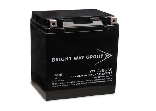 Bright Way Group YTX30L-BS(FA) Original Battery