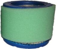 Onan Generator Air Fuel Filter