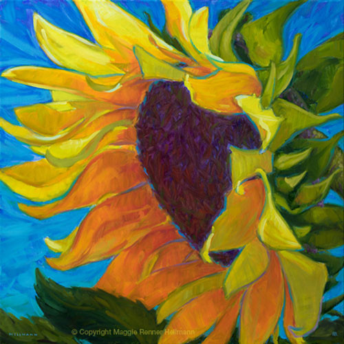 "Original painting by Maggie Renner Hellmann, ""Sunflower Morning"", Oil, 24x24"