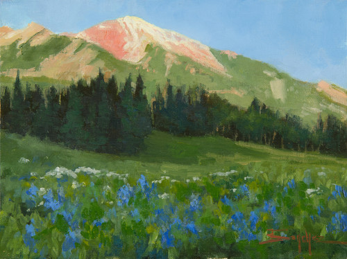 """High Country Wildflowers"" by Terri Sanchez 9x12"