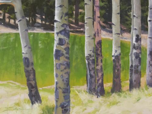 """Aspens At Peak View Pond"" by Terri Sanchez 16x12"