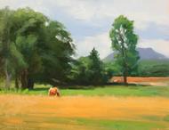 """Grazing at Kiana Ranch"" by Terri Sanchez 11x14"