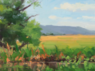 """Sunny Skies at Lowell Ranch"" by Terri Sanchez 6x8"