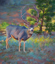 """Nice Rack"" by Terri Sanchez 16x20"
