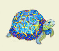 """Star Tortoise"" by Brooke Connor"