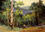 """Turkey Creek Canyon"" by Margaret Jensen 9x12"