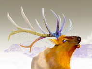 """Bull Elk Singing"" by Brooke Connor"