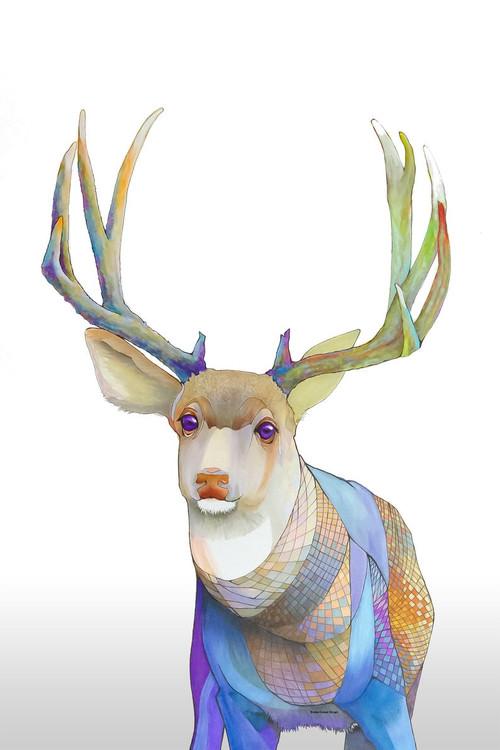 """""""Mule Deer Wondering"""" by Brooke Connor"""