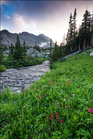 """Into the Sunset Along Cony Creek"" Photograph by Colorado photographer James Frank. This photography was taken in the evening after hiking the upper descent of Hutcheson Lakes to Cony Creek in Rocky Mountain National Park, Colorado, USA."