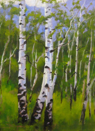 """Summer Aspen Grove"" by Terri Sanchez 12x16"