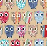 Jumper Owls-Kraft