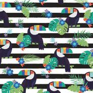 Tropical Toucan