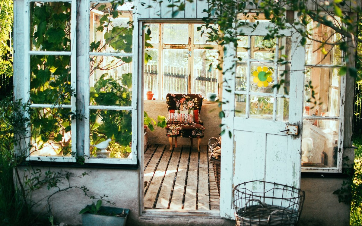 A chair in a vine covered vintage conservatory