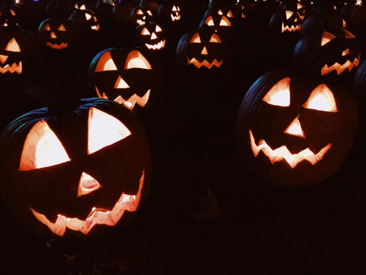 halloween pumpkins before composting