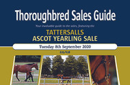 Ascot Yearlings Sale (PDF)