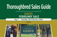 Goffs February Sale Both Days (PDF)