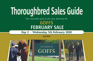 Goffs February Sale Day 2 (PDF)