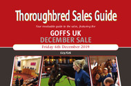 Goffs UK December Sale (PDF)