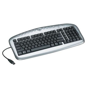 Multimedia Keyboard - Notebook/Laptop Computer Peripheral Devices (tripp_IN3005KB)
