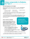 Spanish Type 2 Diabetes Tearpad (50 sheets per pad) (334S) -back side