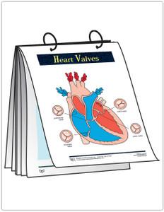 Heart Flip Cards