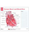 Normal Heart and Blood Flow Tearpad (50 sheets per pad) (670)