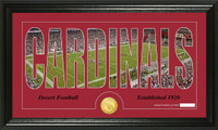 Arizona Cardinals Silhouette Bronze Coin Panoramic Photo Mint