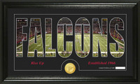 Atlanta Falcons Silhouette Bronze Coin Panoramic Photo Mint