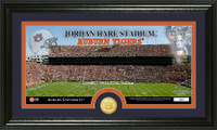 Auburn University Stadium Bronze Coin Panoramic Photo Mint