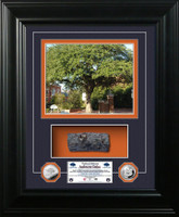 *Auburn Oaks Authentic Oak Marquee Silver Coin Photo Mint