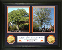Auburn Oaks Then & Now Gold Coin Photo Mint