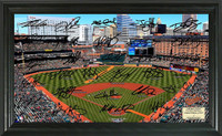 Baltimore Orioles Signature Field