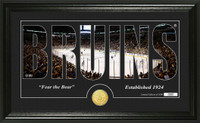 Boston Bruins Silhouette Bronze Coin Panoramic Photo Mint