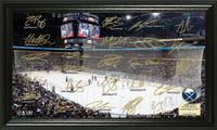 Buffalo Sabres Signature Rink